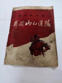革命歌舞剧井冈山的道路(书里有点发霉,水印,书棱破,书以图片为准)