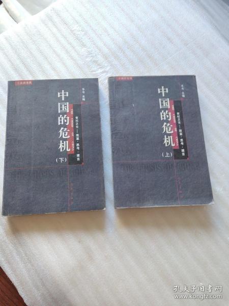 中国的危机:世纪之交—改革·思考·建言