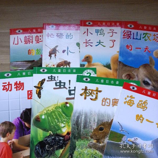 儿童目击者:小蝌蚪的故事