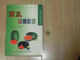 西瓜四季栽培