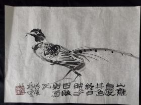 鸟雀图43*32林