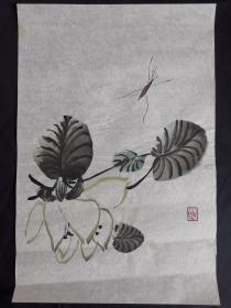虫草花卉42*29齐