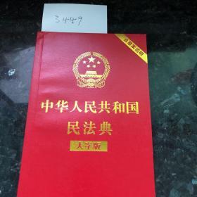 中华人民共和国民法点 大字版