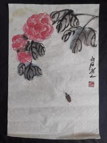 花卉虫草46*31齐