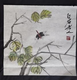 虫草花卉34*34齐