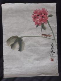 花卉虫草图46*35齐