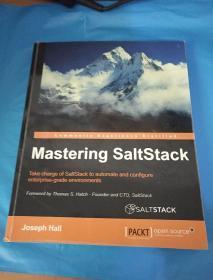 Mastering SaltStack-掌握盐层