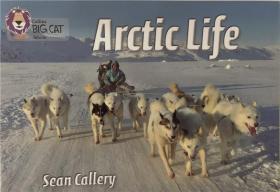 平装 Arctic Life 北极生物
