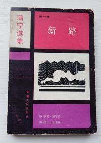 薄宁选集(第一卷:新路)