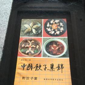 中国饺子集锦
