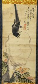 清中晚期老画,花鸟