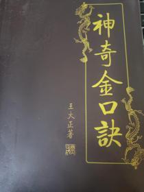 神奇金口诀秘诀  王大正国学谶书复兴之路畅销书籍可带来美好人生幸运宝书