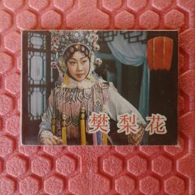 樊梨花(电影版)