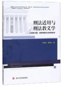 刑法适用与刑法教义学:以刑事习惯、刑事政策为背景的展开