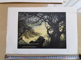 五六十年代 朵云轩木板水印 版画  王琦作38X25cm背有标签