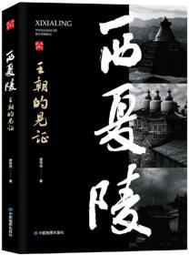 西夏陵—王朝的见证