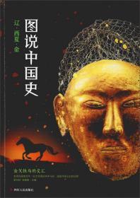 图说中国史:辽西夏金