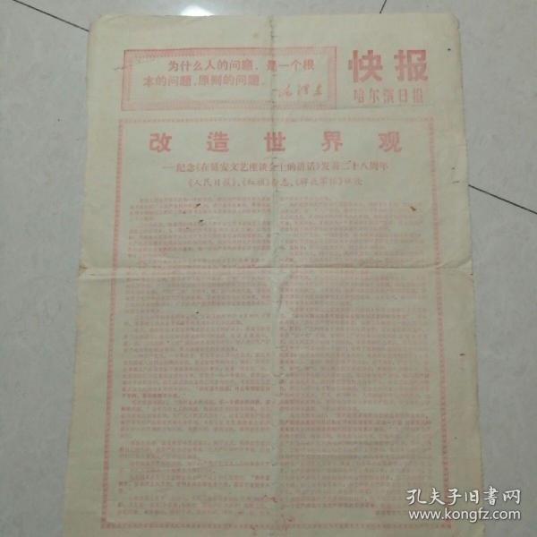 哈尔滨日报快报