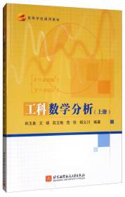 工科数学分析(上册)