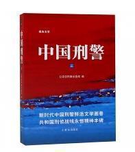 中国刑警(3)