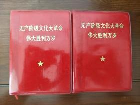 无产阶级文化大革命伟大胜利万岁(上下册)