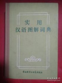 实用汉语图解词典 【精装】