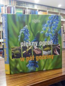 Piekny ogrod)(美丽的花园)