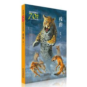 新中国成立70周年儿童文学经典作品集-残豹