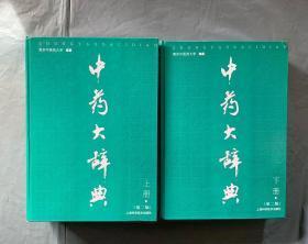 最新版 中药大辞典 第二版 上下 巨厚册 精装 品好