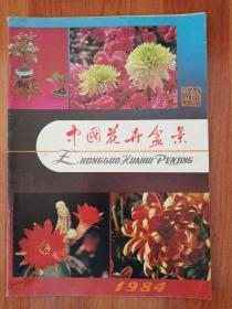 中国花卉盆景创刊号(代发刊词)