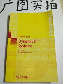Dynamical SystemsExamples of Complex Behavior