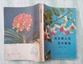 B208北京黄土岗花卉栽培