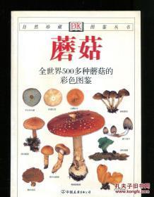 《蘑菇》DK自然珍藏图鉴丛书:全世界500多种蘑菇的彩色图鉴 中国友谊出版公司@---1