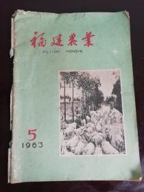 63年5月《福建农业》,内容有茶