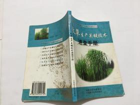 牧草生产关键技术