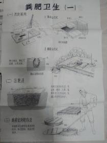 文革前的《农村卫生员训练挂图》(8张一套)稀缺的好东西