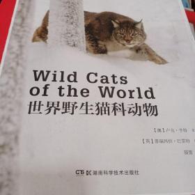 世界野生猫科动物    毛边本现货