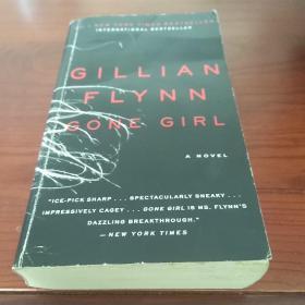 Gone Girl: A Novel消失的爱人 英文原版