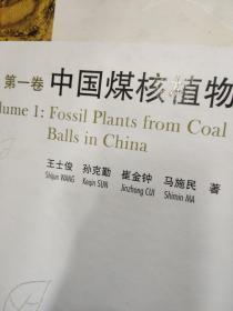中国化石植物志(第1卷):中国煤核植物