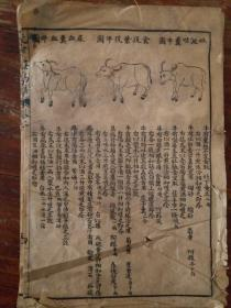 牛马骆驼动物病症及治疗药剂方(残本)