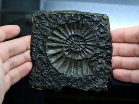 稀有的大铜章 9.5*9.5厘米 浇注章