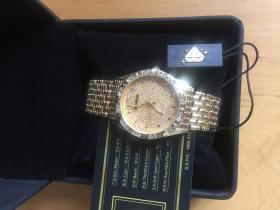 瑞士宝航 boatihome 满天星镀金镶钻奢华防水名表 夜光手表  男钢带腕表