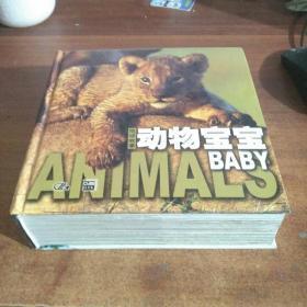动物宝宝:地球故事