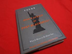 WHO`S AFRAID OF POST-BLACKNESS?/what it means to be black now,MICHAEL ERIC DYSON
