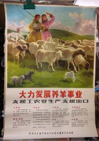 宣传画 大力发展养羊事业 支援工农业生产 支援出口  2开