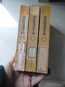 布拉热洛纳子爵(上中下全三册).
