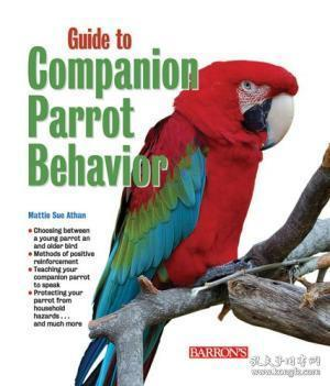 Guide to Companion Parrot Behavior