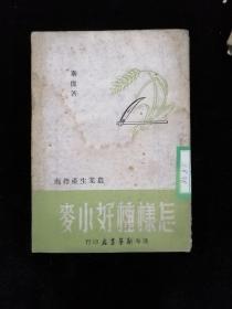 怎样种小麦•渤海新华书店•1948年一版一印