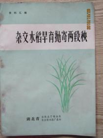 杂交水稻旱育抛寄两段秧资料汇编