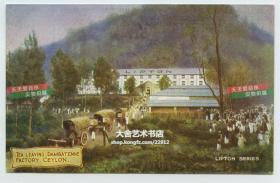清代1908年锡兰的立顿茶园明信片---成品茶叶从最有名的达姆巴尼 (Dambatenne)茶厂运出老明信片